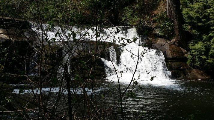 Bowen Park Falls