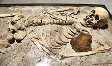 The 800-year-old skeleton found in Bulgaria stabbed through the chest with iron rod.[65]
